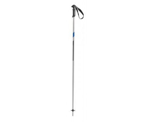 Head Multi Ski Poles: Silver, Blue and Black